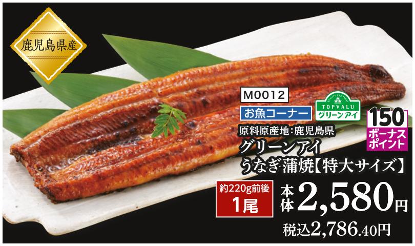 原料原産地:鹿児島県グリーンアイうなぎ蒲焼【特大サイズ】