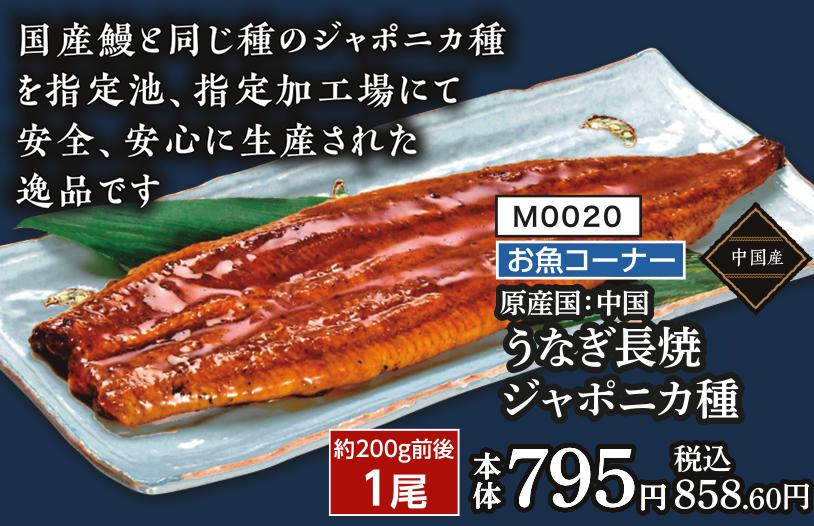 【ザ・ビッグ店舗受取のみ】うなぎ長焼 ジャポニカ種 約200g前後