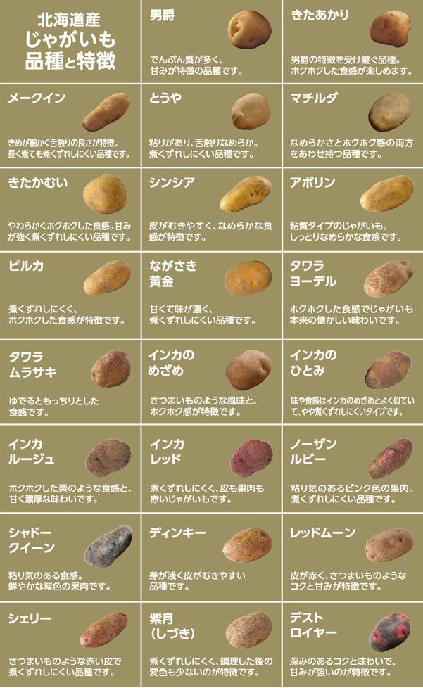 北海道産じゃがいも 品種と特徴